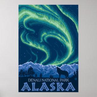 Aurora boreal - parque nacional de Denali, Alaska Poster