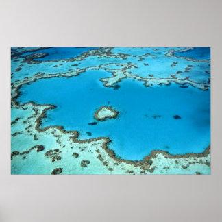 Austrália - Queensland - grande recife de coral. 4 Poster