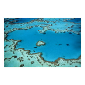 Austrália - Queensland - grande recife de coral. 5 Poster