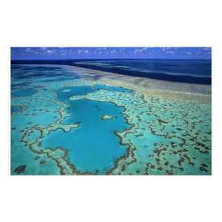 Austrália - Queensland - grande recife de coral. 7 Poster