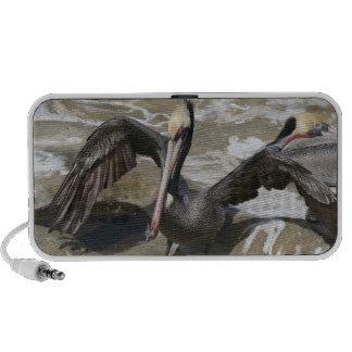Auto-falante do Doodle do pelicano Caixinhas De Som Portátil