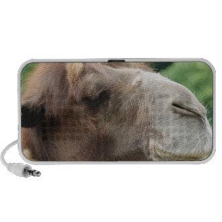 Auto-falante do Portable do camelo árabe Caixinha De Som Para Mini