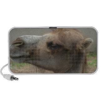 Auto-falante portáteis principais do camelo caixinha de som para laptop
