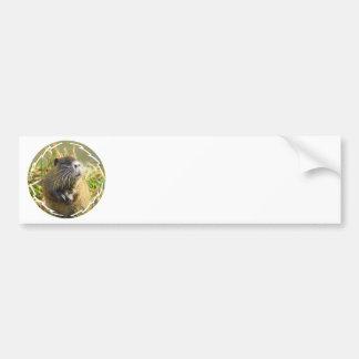 Autocolante no vidro traseiro da foto do castor adesivo