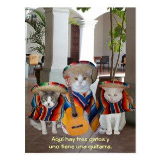 Auxílio de ensino espanhol engraçado de Tres Gatos Cartão Postal
