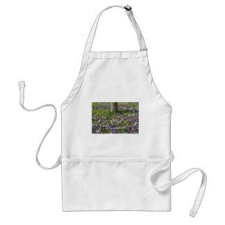 Avental Açafrões do campo de flores na grama do primavera