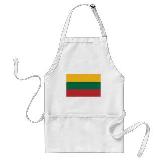 Avental Baixo custo! Bandeira de Lithuania