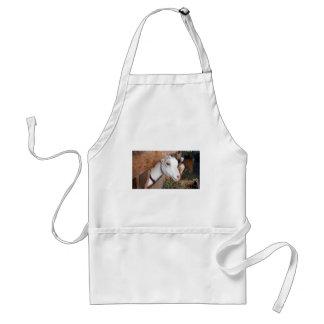 Avental Cabra branca