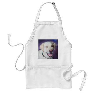 Avental cão