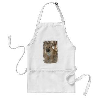 Avental do filhote de cachorro de Akita
