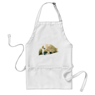 Avental dos filhotes de cachorro de Pekingese