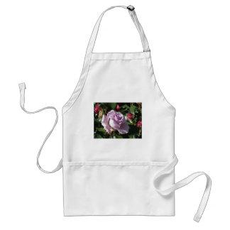 Avental Flor cor-de-rosa da única violeta com rosas