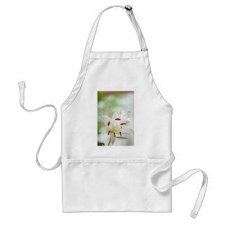 Avental Flor do lírio branco inteiramente aberta