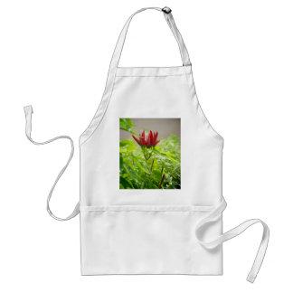 Avental Flor do pimentão