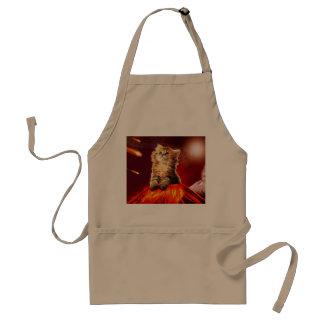 Avental gato do vulcão, gato vulcan,