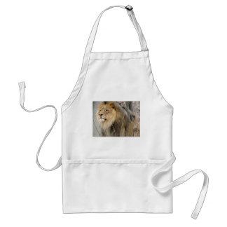 Avental Leão estóico que olha fora na distância