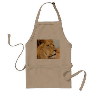 Avental Leão grande que olha longe