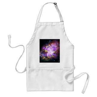 Avental O raio X de Chandra na nebulosa de caranguejo