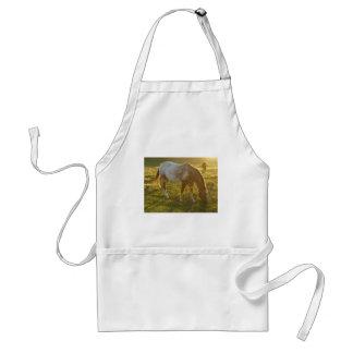 Avental Pastando o cavalo do Appaloosa