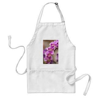 Avental Profundamente - corrente de flor cor-de-rosa da