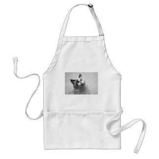 Avental Retrato preto e branco do gatinho