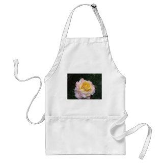 Avental Única flor do rosa amarelo com gotas de água