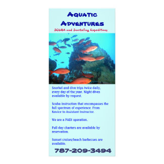 Aventuras aquáticas, cartão da cremalheira