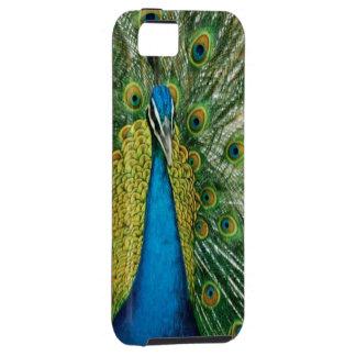 Avestruz bonita! capa tough para iPhone 5