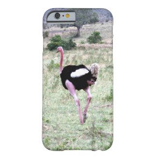 avestruz capa barely there para iPhone 6