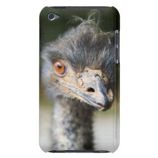 Avestruz Capa Para iPod Touch