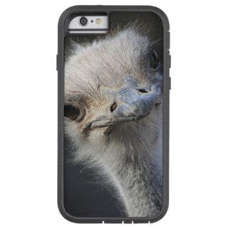 Avestruz Capa Tough Xtreme Para iPhone 6