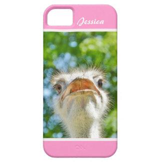 Avestruz engraçada - caso conhecido feminino do capa para iPhone 5