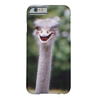 Avestruz que pisc - engraçada capa barely there para iPhone 6