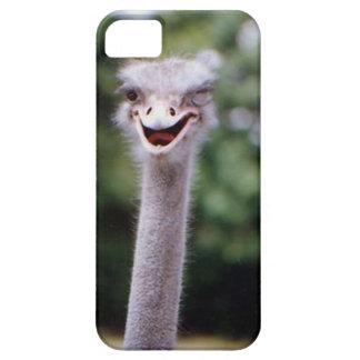 Avestruz que pisc - engraçada capa para iPhone 5