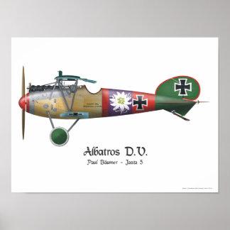 Avião de combate alemão Bäumer de Albatros D.V. Poster