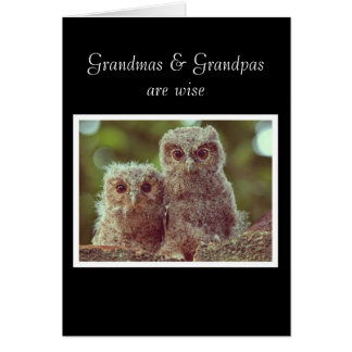 avó e vovô sábios cartão comemorativo