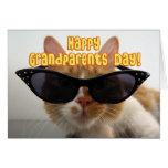 Avó feliz do dia das avós - gato legal cartao