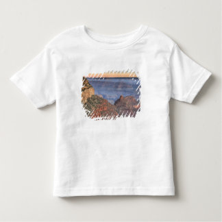 AZ, arizona, parque nacional do Grand Canyon, 2 Camiseta