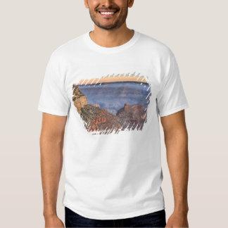 AZ, arizona, parque nacional do Grand Canyon, 2 Tshirts