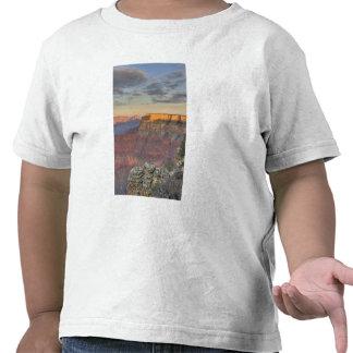 AZ, arizona, parque nacional do Grand Canyon, sul T-shirt