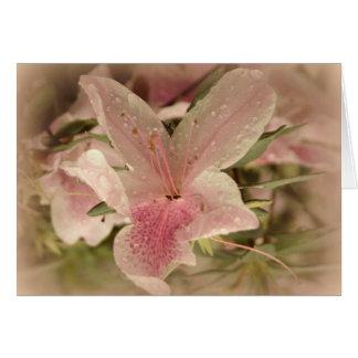Azálea cor-de-rosa cartão comemorativo