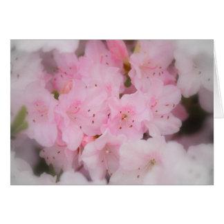Azáleas cor-de-rosa cartão