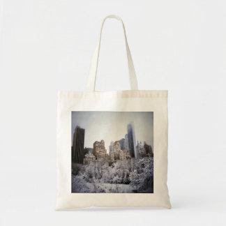 Azuis do inverno no Central Park Bolsa Tote