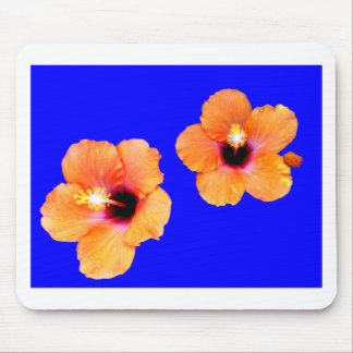 Azul alaranjado BG do hibiscus os presentes de Zaz Mouse Pads