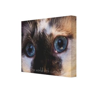 Azul bonito impressão eyed das canvas do gato