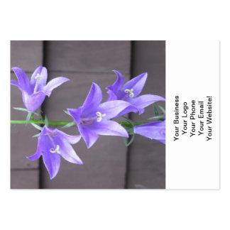 Azul da flor da planta de jardim do Campanula Cartão De Visita Grande