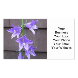 Azul da flor da planta de jardim do Campanula Cartão De Visita
