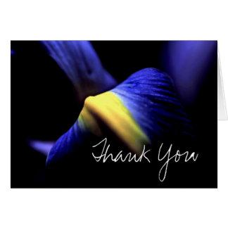 Azul macro floral da íris dos cartões de