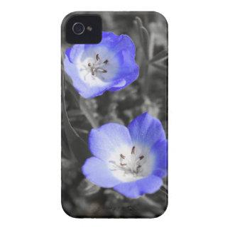 Azul selvagem capinhas iPhone 4