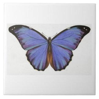 Azulejo azul da borboleta do vintage